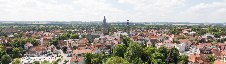 Skyline mit Wiesen und Petrikirche